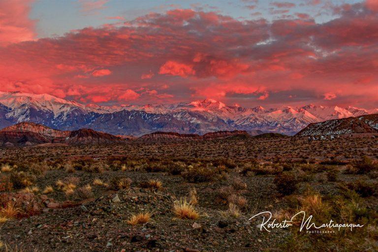 Safari Fotografico en Mendoza